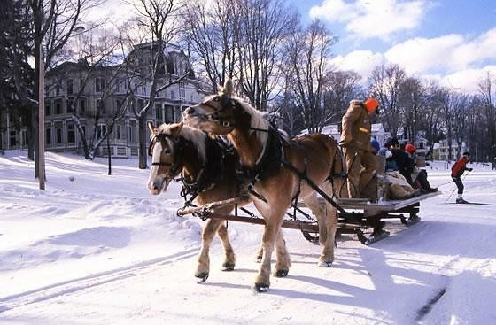 Stateline Draft Horse Club offers sleigh rides at Chautauqua